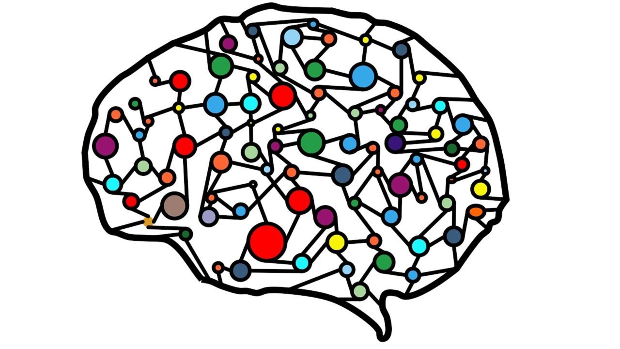 Datenqualität als Schlüssel zu erfolgreichen ML-Projekten